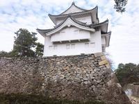 名古屋城の写真・動画_image_342724