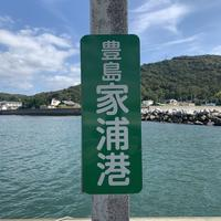 家浦港の写真・動画_image_343849