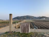 大官大寺跡の写真・動画_image_345090