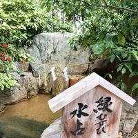 生田神社の写真・動画_image_348751