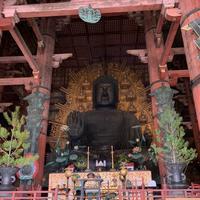 東大寺の写真・動画_image_349198