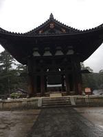 東大寺の写真・動画_image_350411