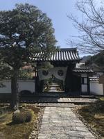 圓光寺の写真・動画_image_352436