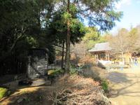 書写山圓教寺の写真・動画_image_352933