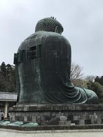 鎌倉大仏殿高徳院の写真・動画_image_353766