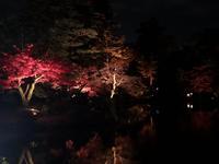 兼六園の写真・動画_image_354297
