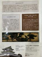 元離宮 二条城の写真・動画_image_359303