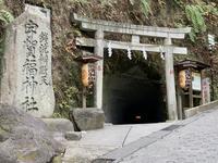 銭洗弁財天宇賀福神社の写真・動画_image_363146