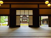妙心寺の写真・動画_image_363513