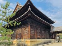 妙心寺の写真・動画_image_363516