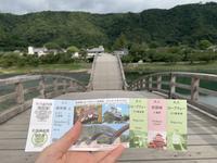 錦帯橋の写真・動画_image_364876