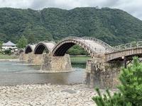 錦帯橋の写真・動画_image_364879