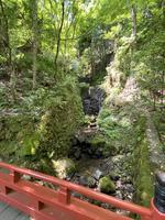 貴船神社の写真・動画_image_366003