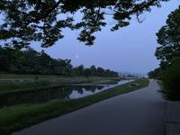 鴨川の写真・動画_image_366025