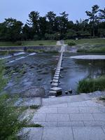 鴨川の写真・動画_image_366026