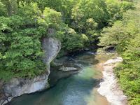 吹割の滝の写真・動画_image_367688