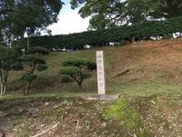 熊本城の写真・動画_image_368873