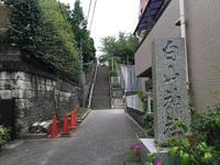 白山神社の写真・動画_image_369548