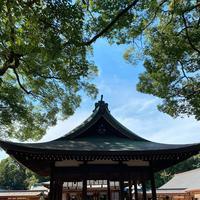 氷川神社の写真・動画_image_370758