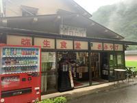 弥生食堂の写真・動画_image_371937