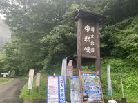 弥生食堂の写真・動画_image_371940