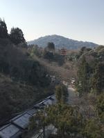 清水寺の写真・動画_image_372183