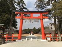 上賀茂神社(賀茂別雷神社)の写真・動画_image_372201