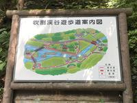 吹割の滝の写真・動画_image_375238