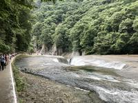 吹割の滝の写真・動画_image_375240