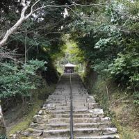 二尊院の写真・動画_image_375573