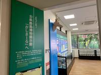 北条鹿島博物展示館の写真・動画_image_375791