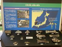 北条鹿島博物展示館の写真・動画_image_375797