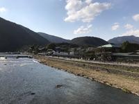 渡月橋の写真・動画_image_375832