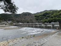 渡月橋の写真・動画_image_375833