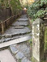 祇王寺の写真・動画_image_375844