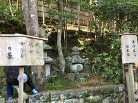祇王寺の写真・動画_image_375854