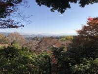 常寂光寺の写真・動画_image_375892