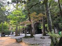 南禅寺の写真・動画_image_375918