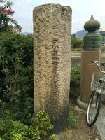 三条大橋の写真・動画_image_376954