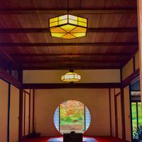 明月院(あじさい寺)の写真・動画_image_377090