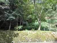美保神社の写真・動画_image_377430