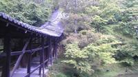 高台寺の写真・動画_image_377919