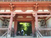 醍醐寺の写真・動画_image_378037
