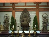 醍醐寺の写真・動画_image_378039