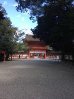 下鴨神社(賀茂御祖神社)の写真・動画_image_384014
