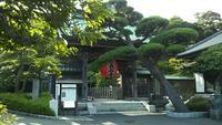 長谷寺の写真・動画_image_384141