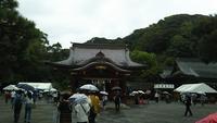 鶴岡八幡宮の写真・動画_image_385410