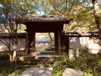 瑞泉寺の写真・動画_image_389203
