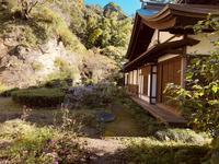 瑞泉寺の写真・動画_image_389204