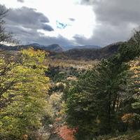 湯滝の写真・動画_image_389843